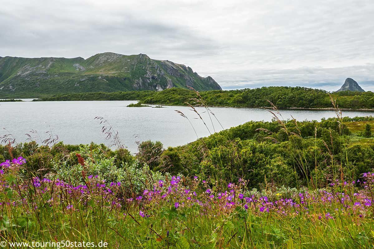 Die Insel Andøya